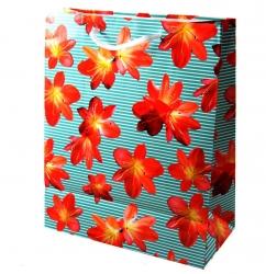 Пакет для подарка арт. 578 26*32 см