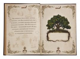"""Книга """"Семейная летопись"""" в картонной обложке и подарочном картонном футляре"""